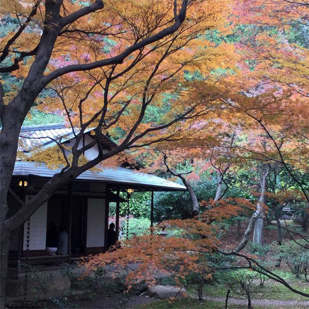 f:id:showtaro-aoki:20171202180153j:image