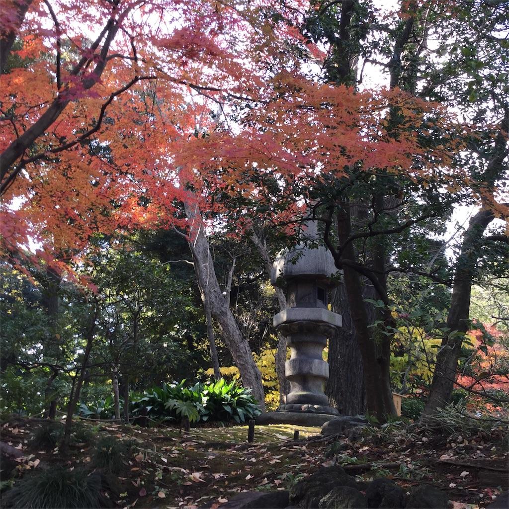 f:id:showtaro-aoki:20171202181526j:image