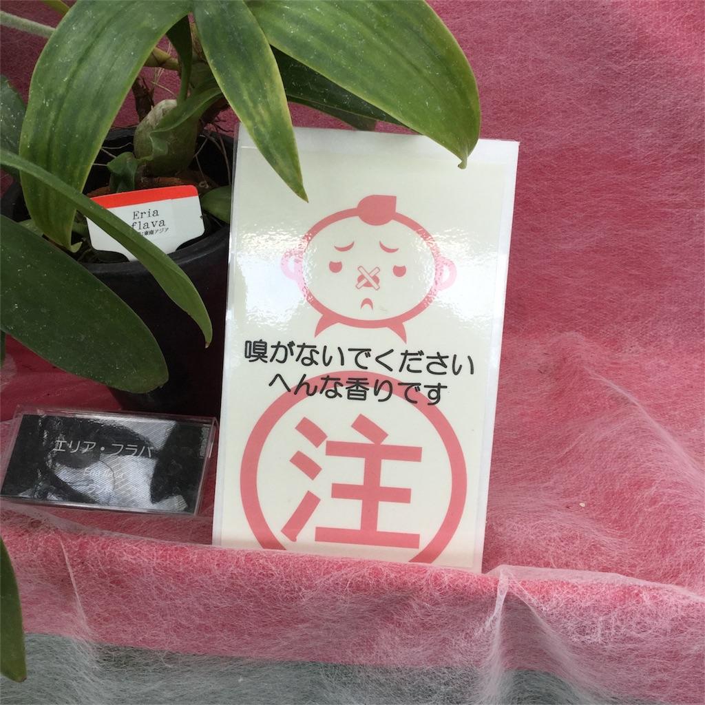 f:id:showtaro-aoki:20180201170606j:image