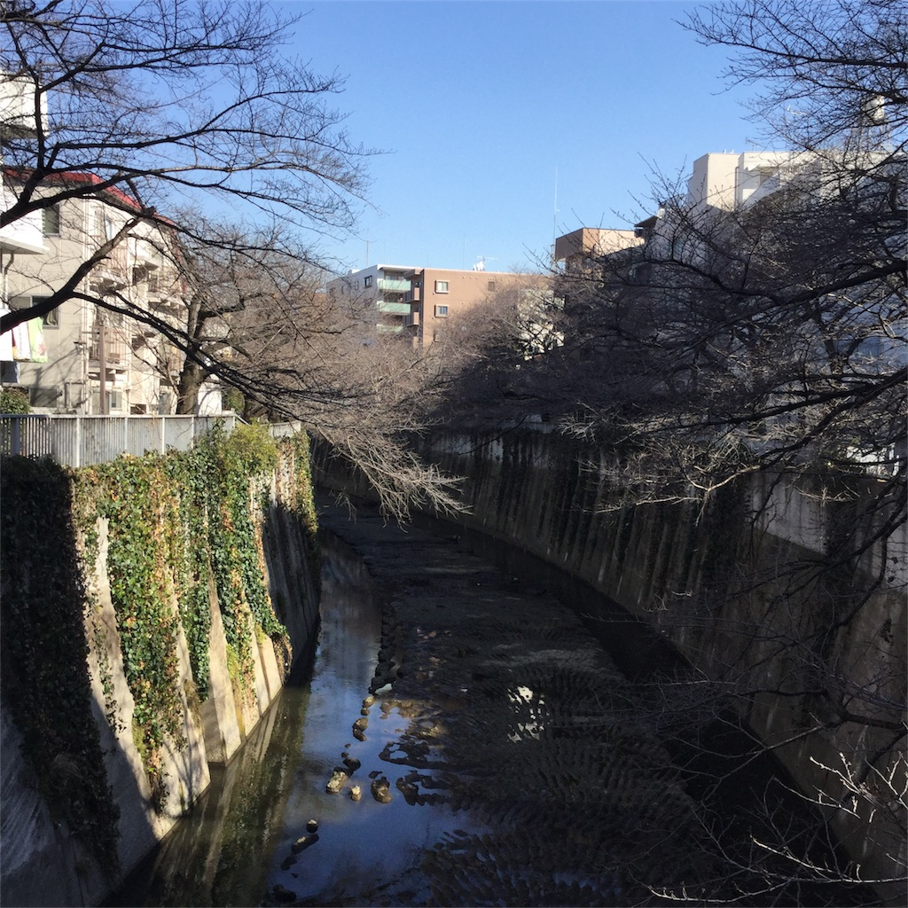 f:id:showtaro-aoki:20180216154634j:image