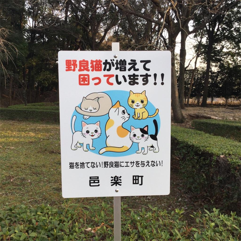 f:id:showtaro-aoki:20180320132624j:plain