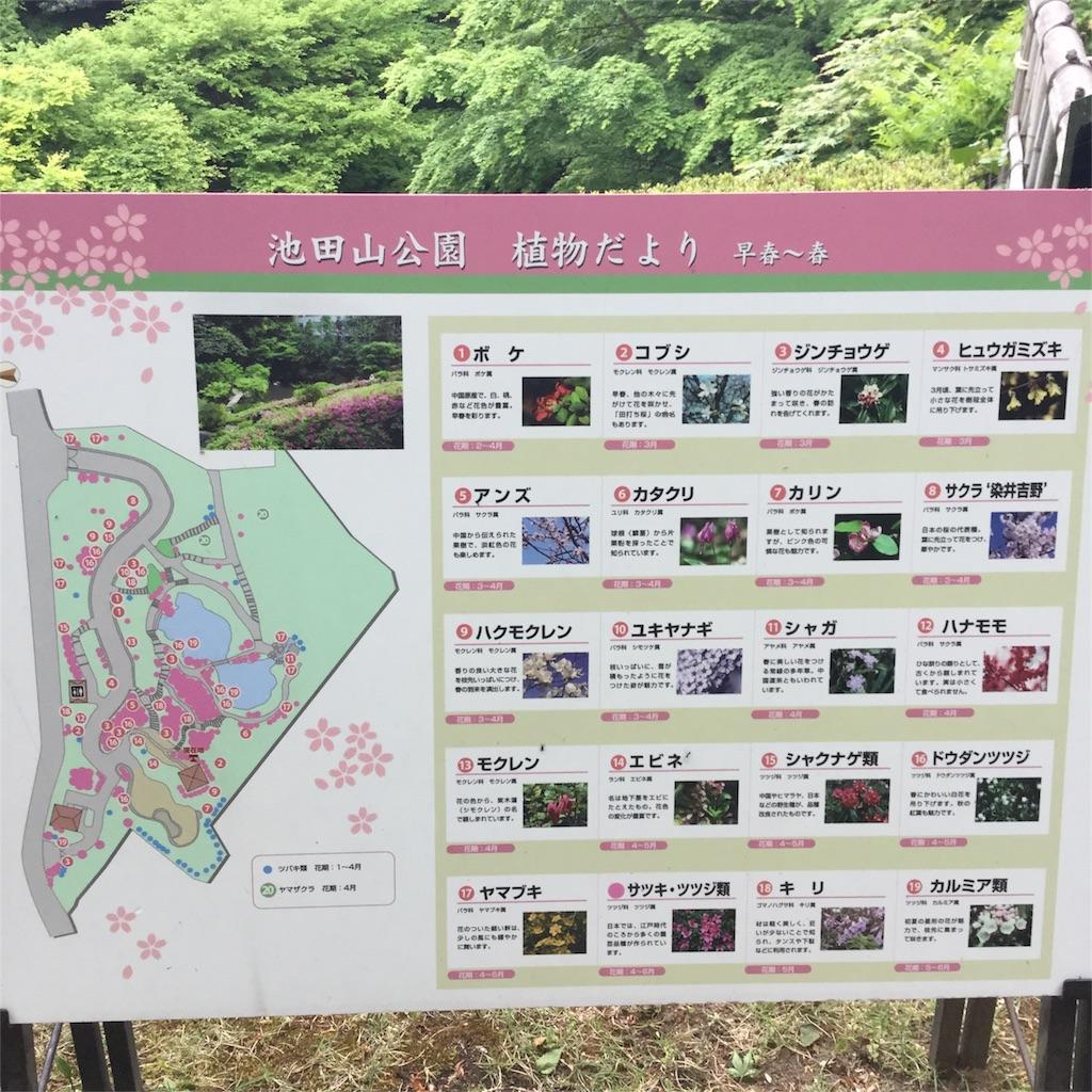 f:id:showtaro-aoki:20180426162139j:plain