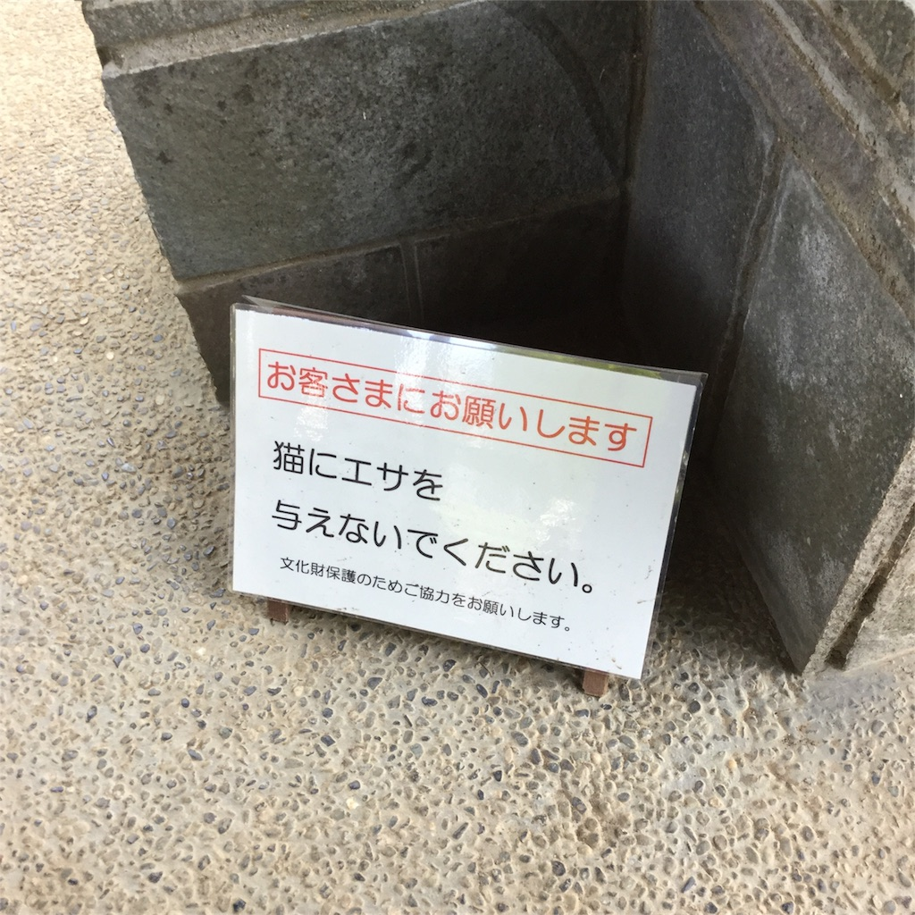 f:id:showtaro-aoki:20180519175722j:plain