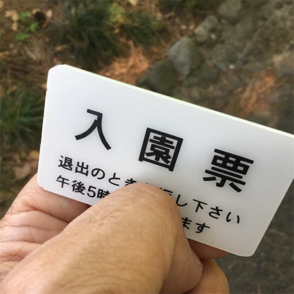 f:id:showtaro-aoki:20180606162851j:plain