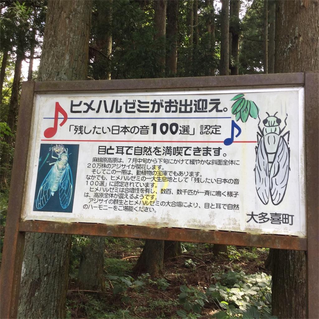 f:id:showtaro-aoki:20180725182114j:plain