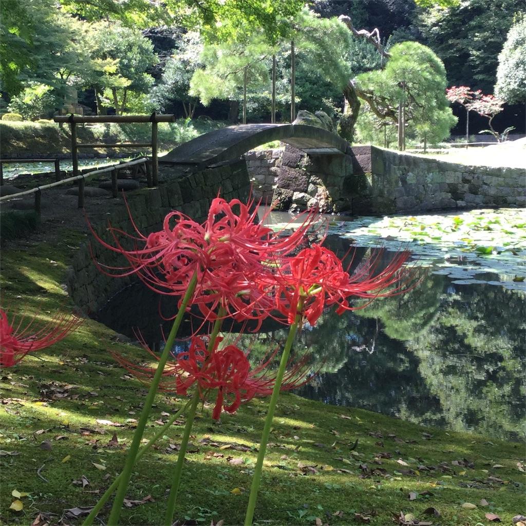 f:id:showtaro-aoki:20181008181801j:plain