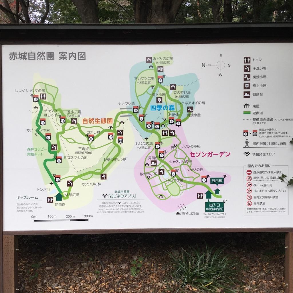 f:id:showtaro-aoki:20181118151823j:plain