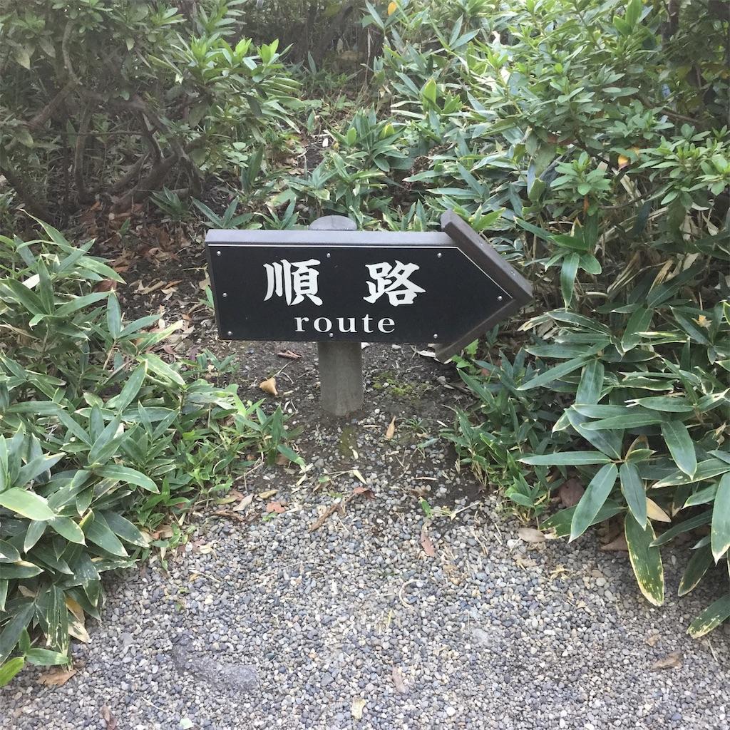 f:id:showtaro-aoki:20181126220748j:plain