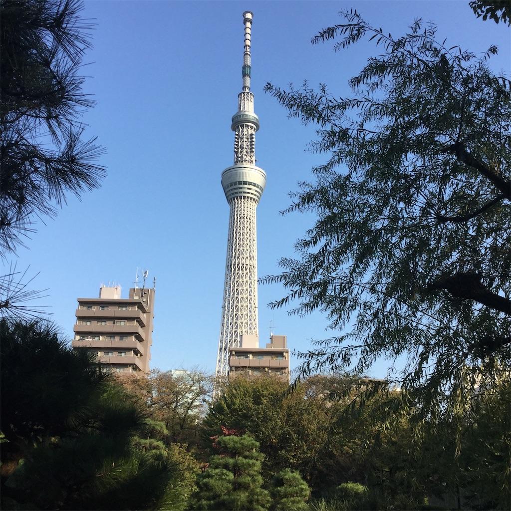 f:id:showtaro-aoki:20181126220753j:plain
