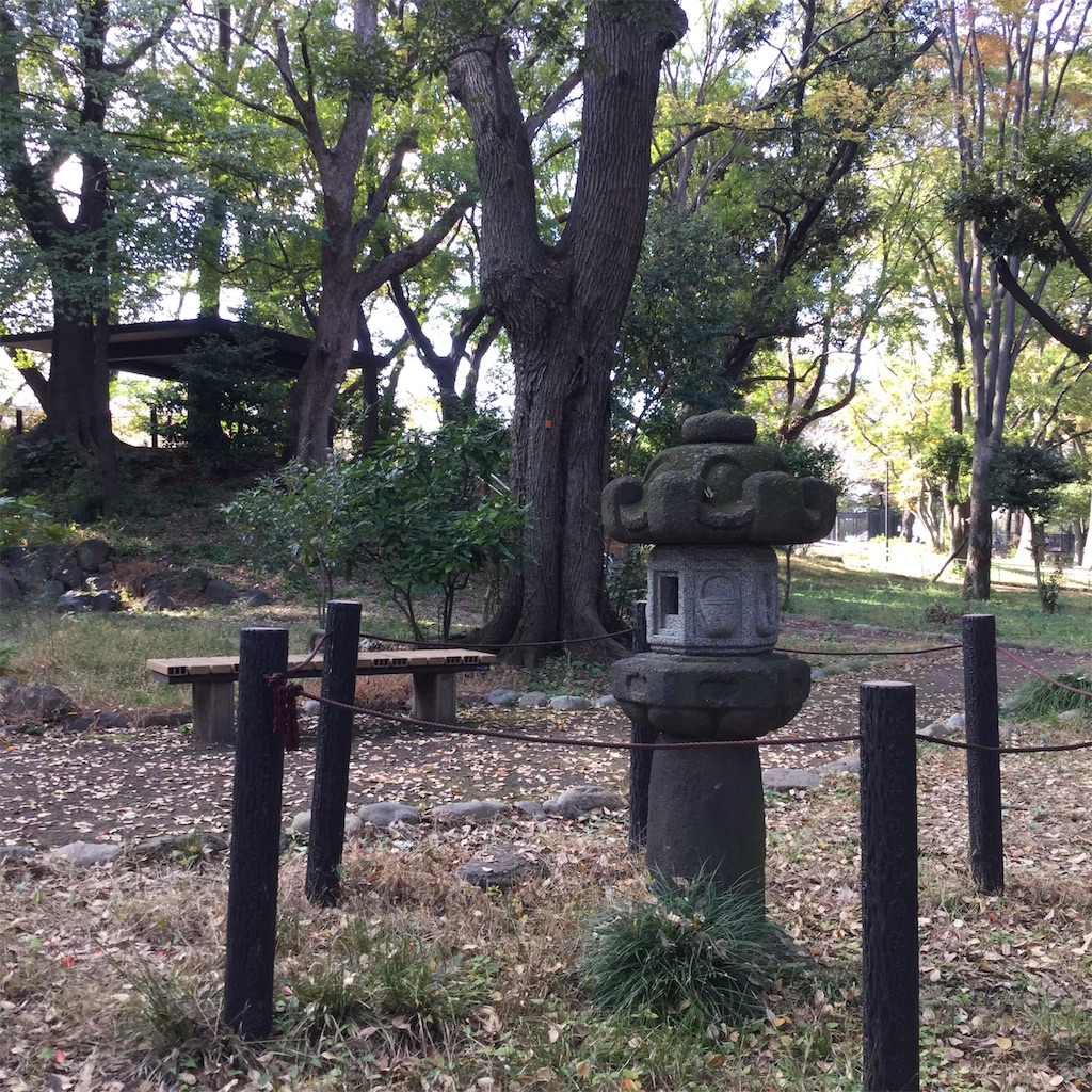 f:id:showtaro-aoki:20181129222243j:plain