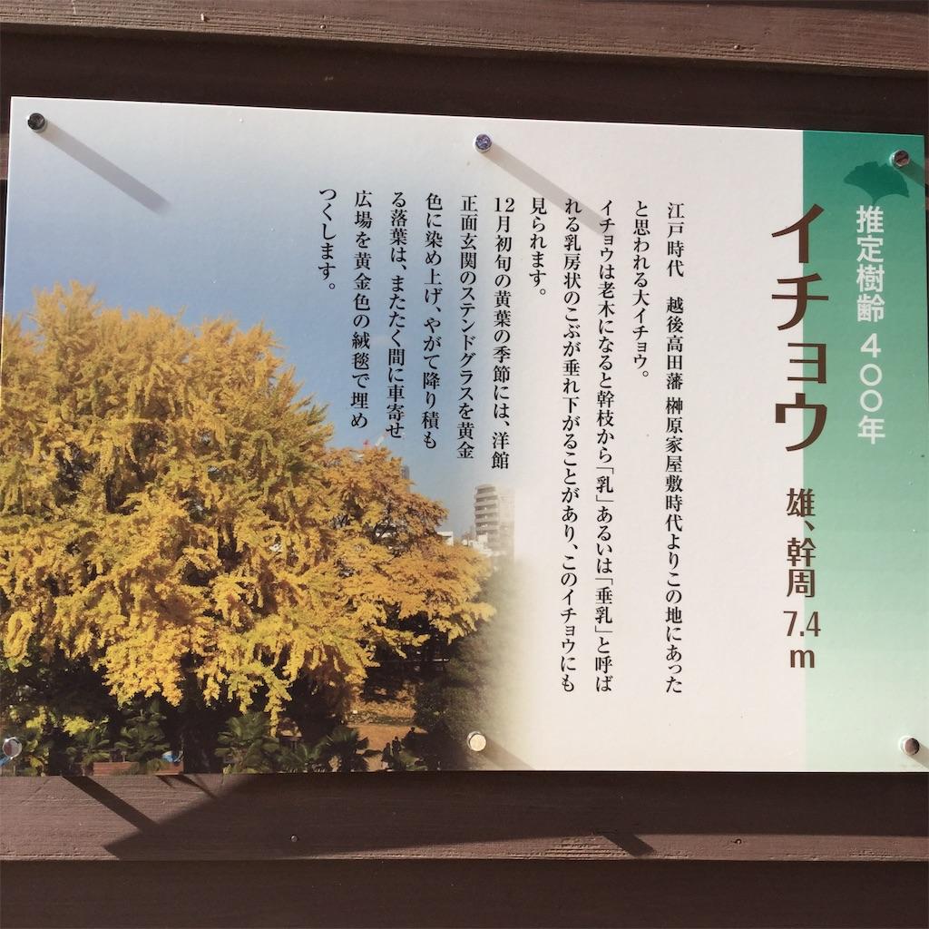 f:id:showtaro-aoki:20181206162545j:plain