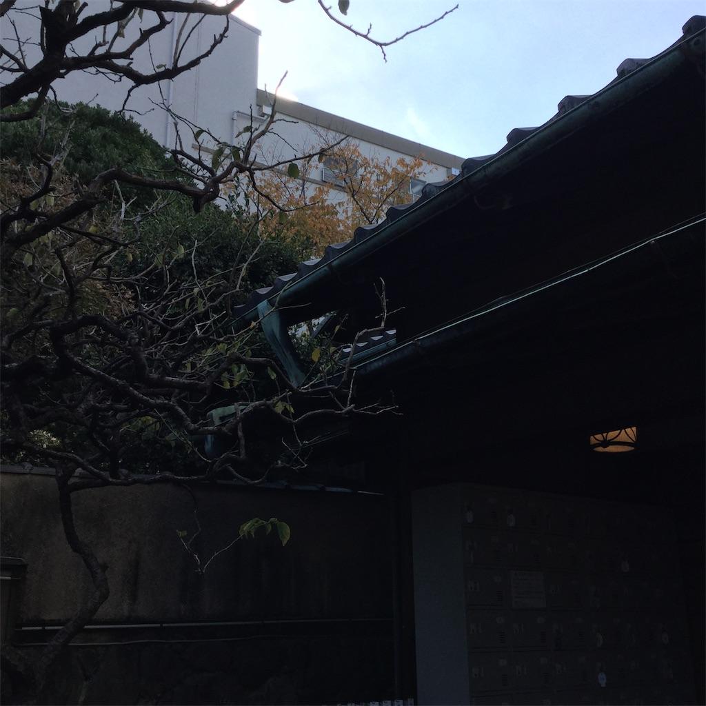 f:id:showtaro-aoki:20181207222740j:plain