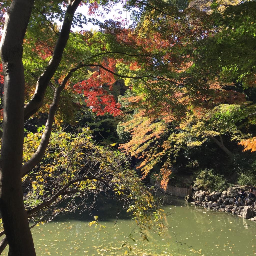 f:id:showtaro-aoki:20181207222825j:plain
