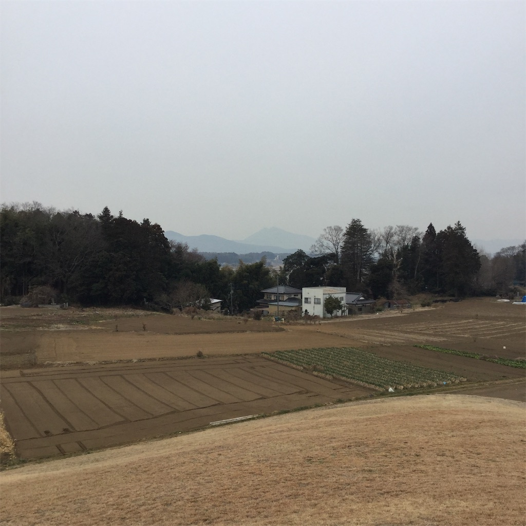 f:id:showtaro-aoki:20190228222712j:plain