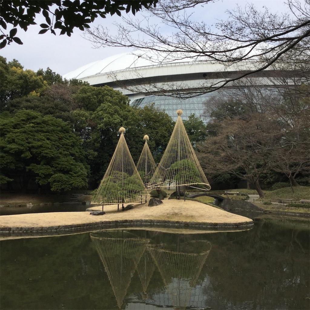 f:id:showtaro-aoki:20190308210545j:plain