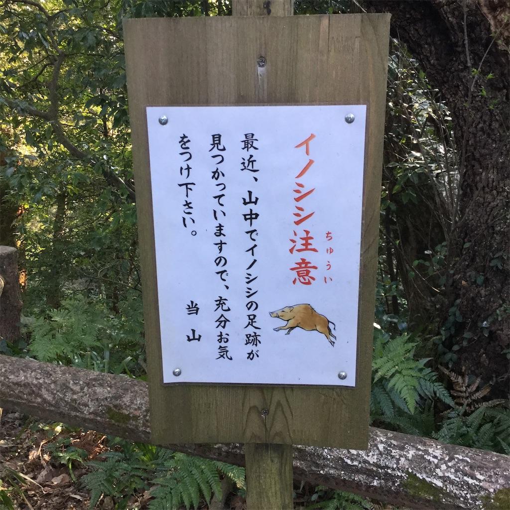 f:id:showtaro-aoki:20190323163217j:plain
