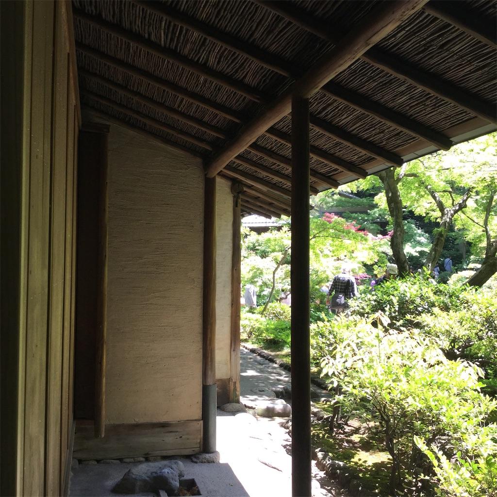 f:id:showtaro-aoki:20190522182434j:plain