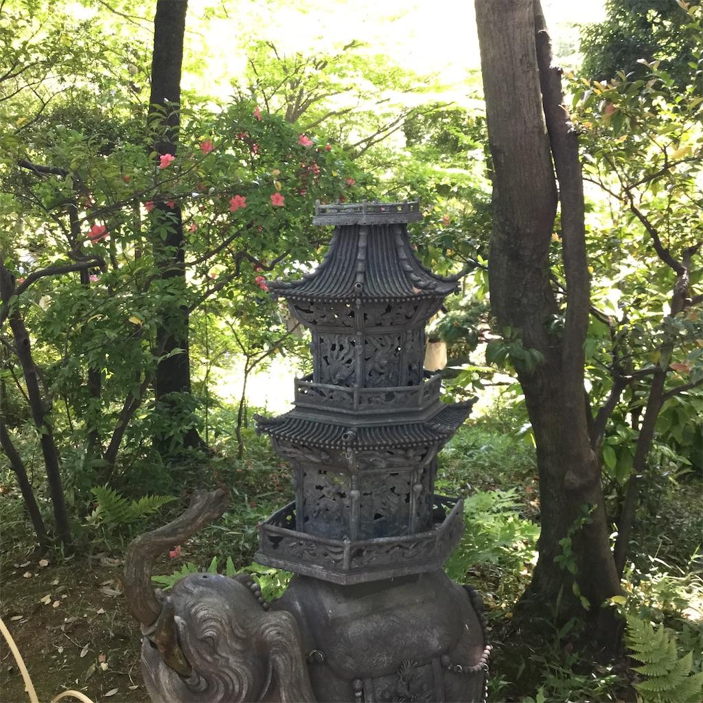 f:id:showtaro-aoki:20190522182437j:plain