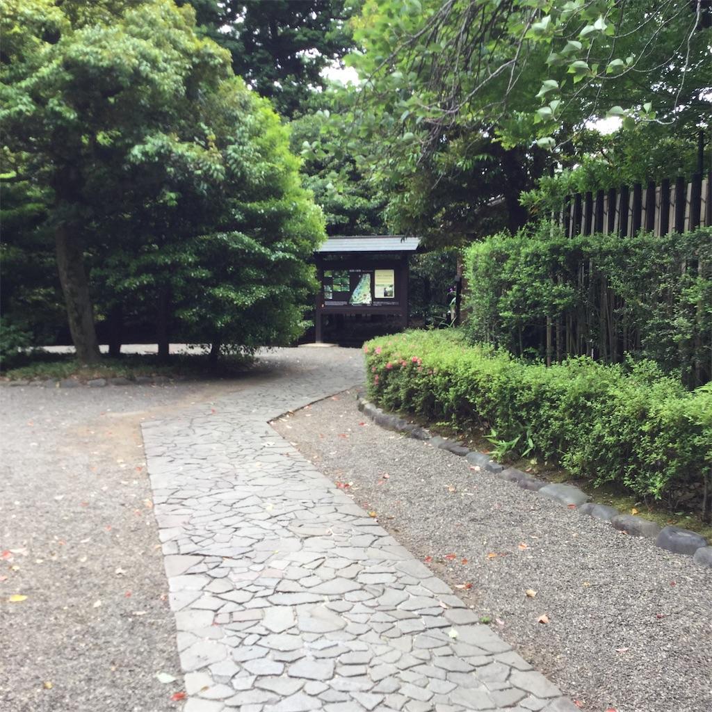 f:id:showtaro-aoki:20190621140626j:plain