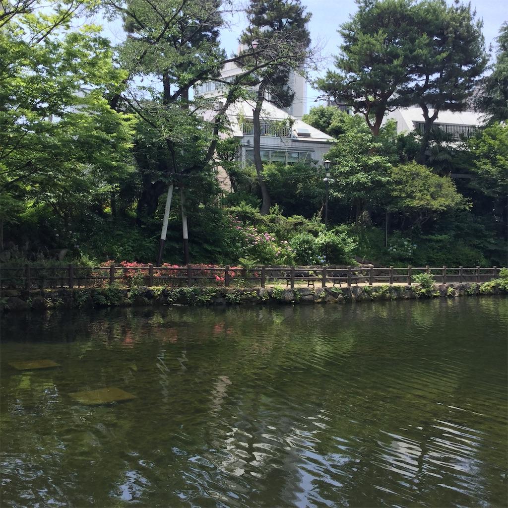 f:id:showtaro-aoki:20190628115702j:plain