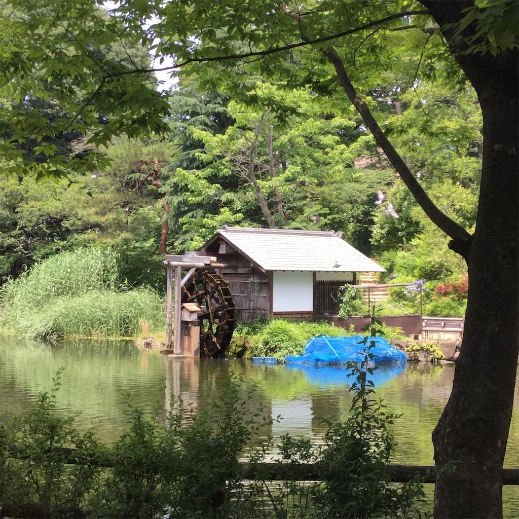f:id:showtaro-aoki:20190628115726j:plain