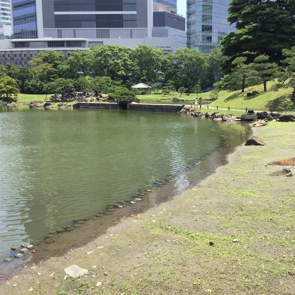 f:id:showtaro-aoki:20190805114530j:plain