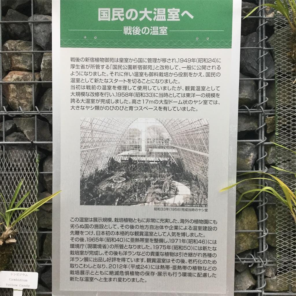 f:id:showtaro-aoki:20190812113728j:plain