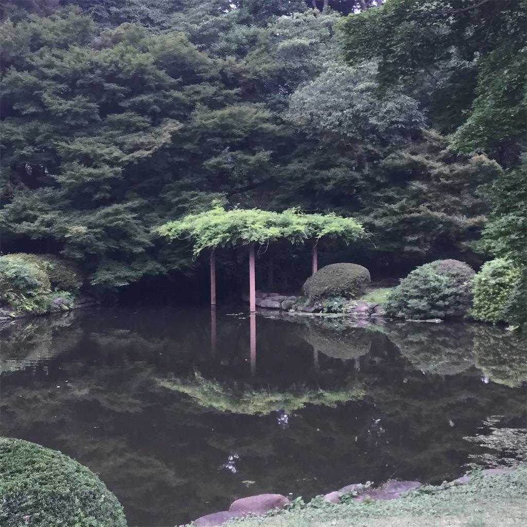 f:id:showtaro-aoki:20190812113838j:plain