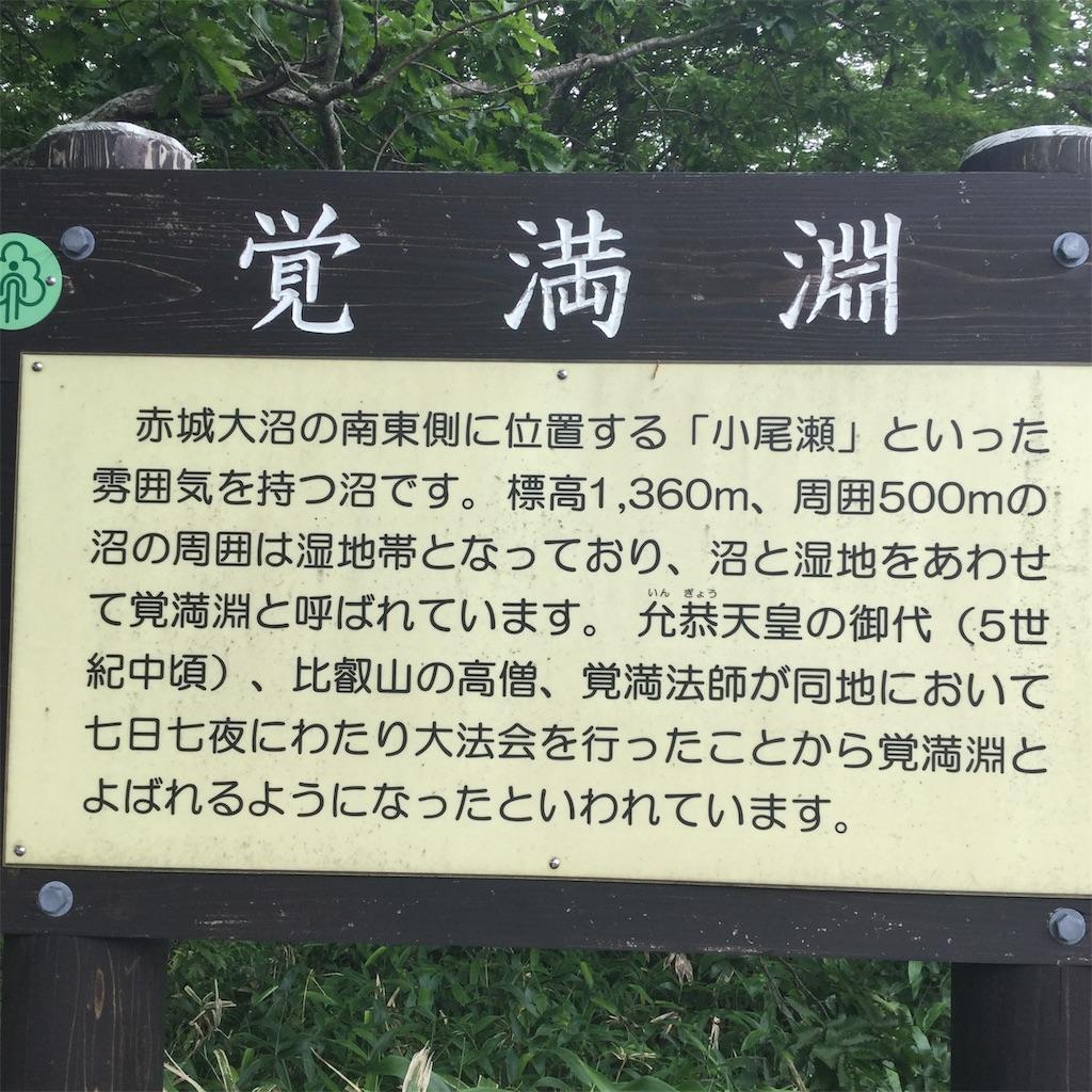 f:id:showtaro-aoki:20190813151159j:plain