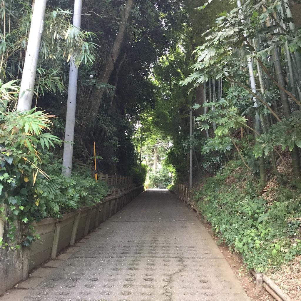 f:id:showtaro-aoki:20190902135623j:plain