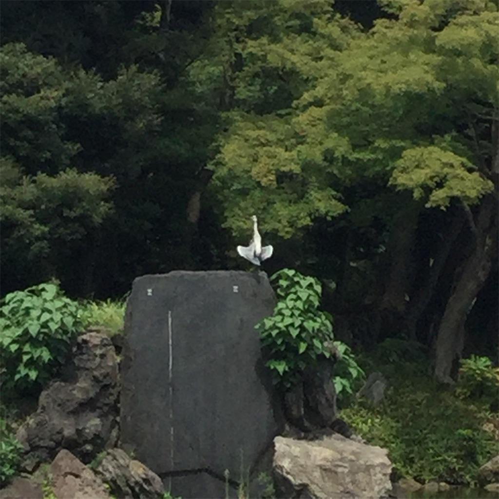 f:id:showtaro-aoki:20190908174538j:plain