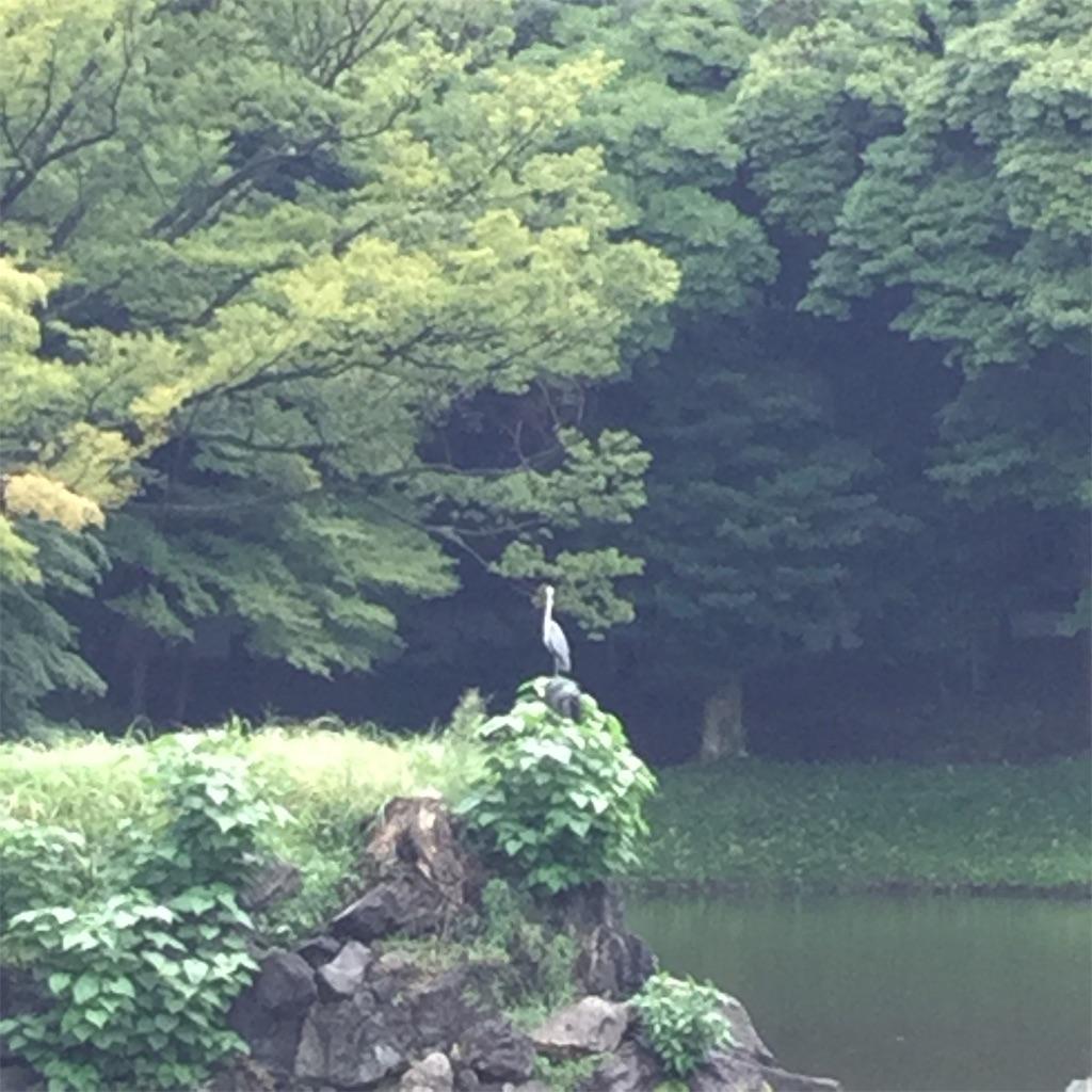 f:id:showtaro-aoki:20190908174611j:plain