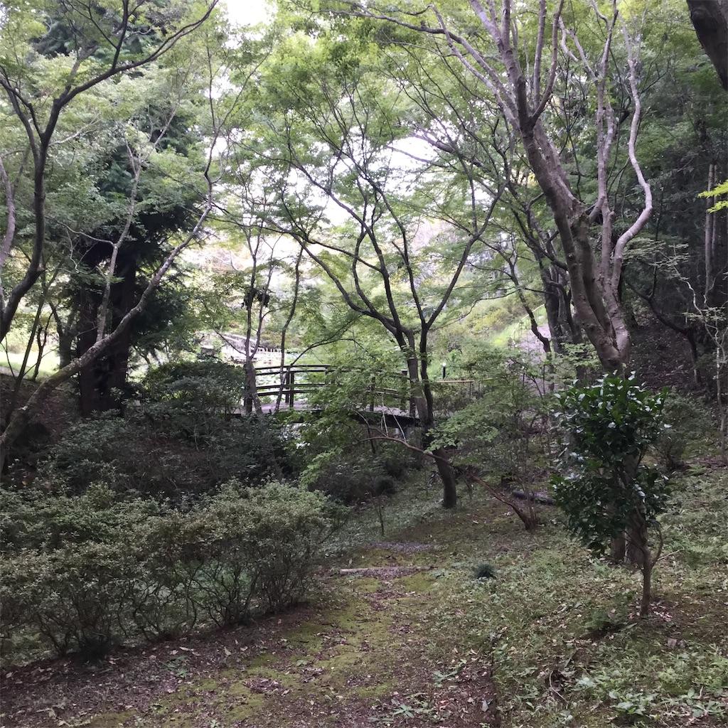 f:id:showtaro-aoki:20191001115354j:plain