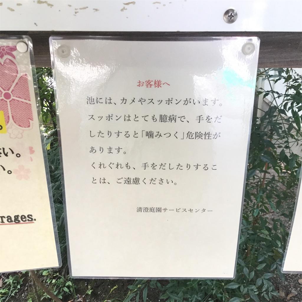 f:id:showtaro-aoki:20191109183236j:plain