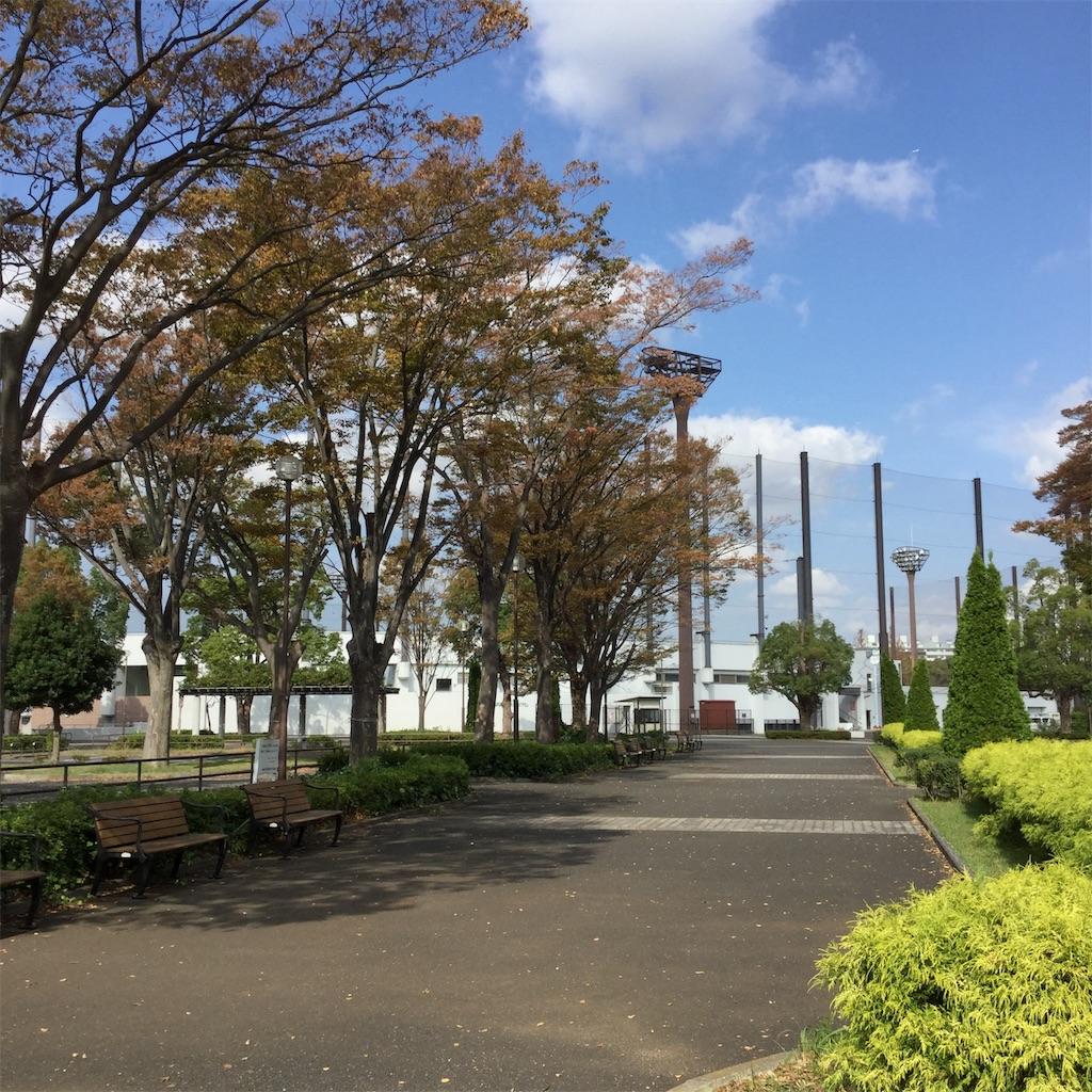 f:id:showtaro-aoki:20191118132945j:plain