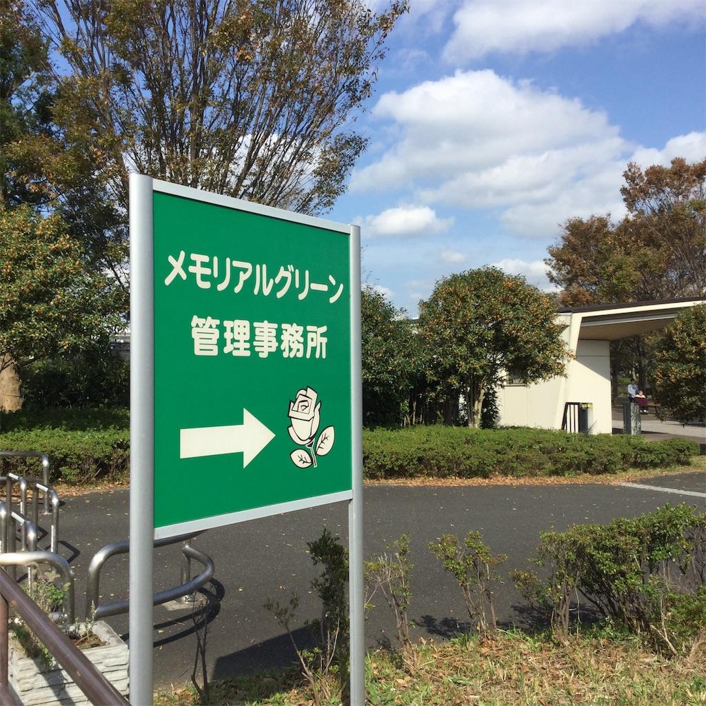f:id:showtaro-aoki:20191118133050j:plain