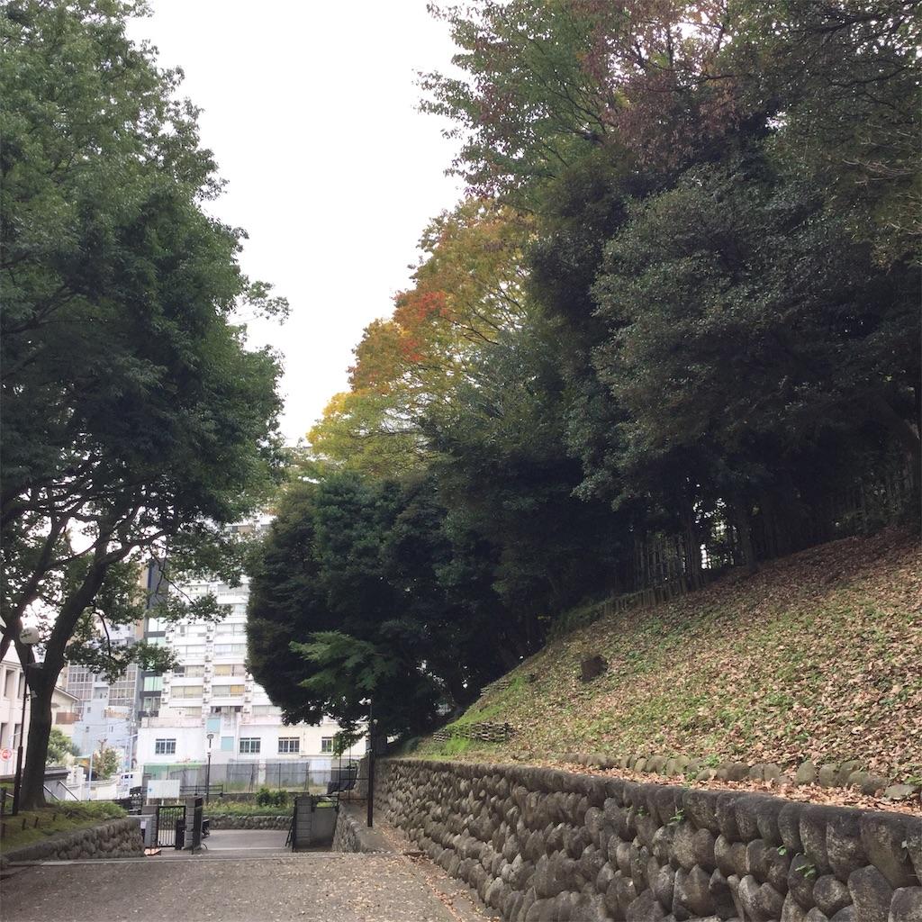 f:id:showtaro-aoki:20191205141837j:plain