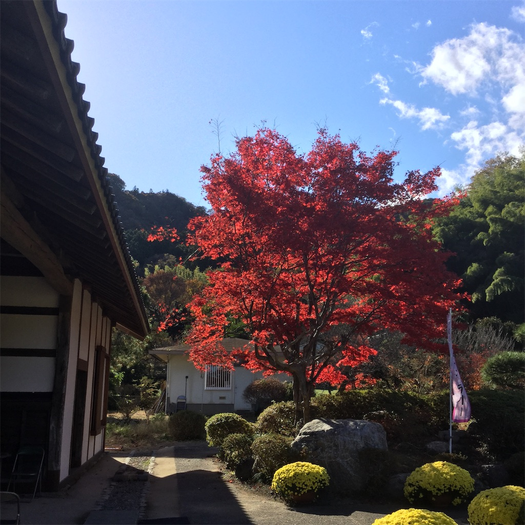 f:id:showtaro-aoki:20191216134320j:plain
