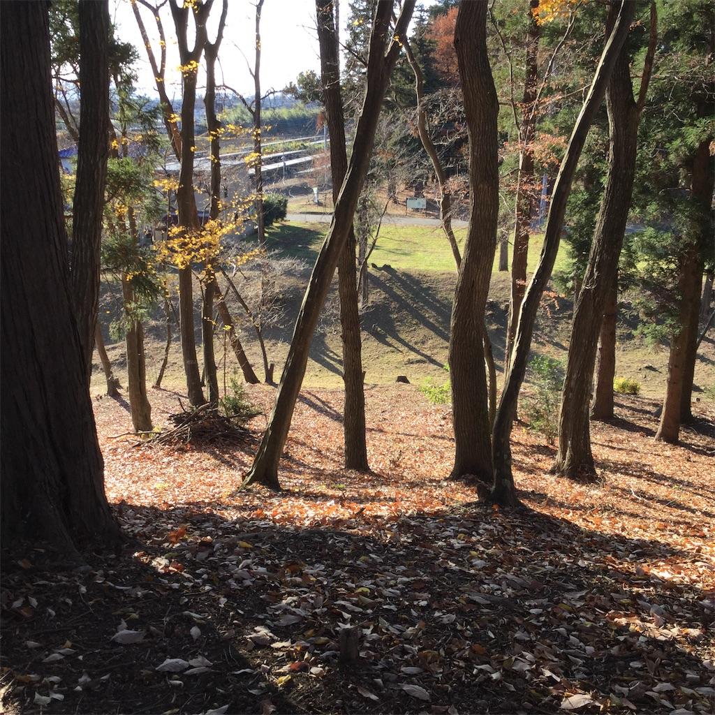 f:id:showtaro-aoki:20200104181951j:plain