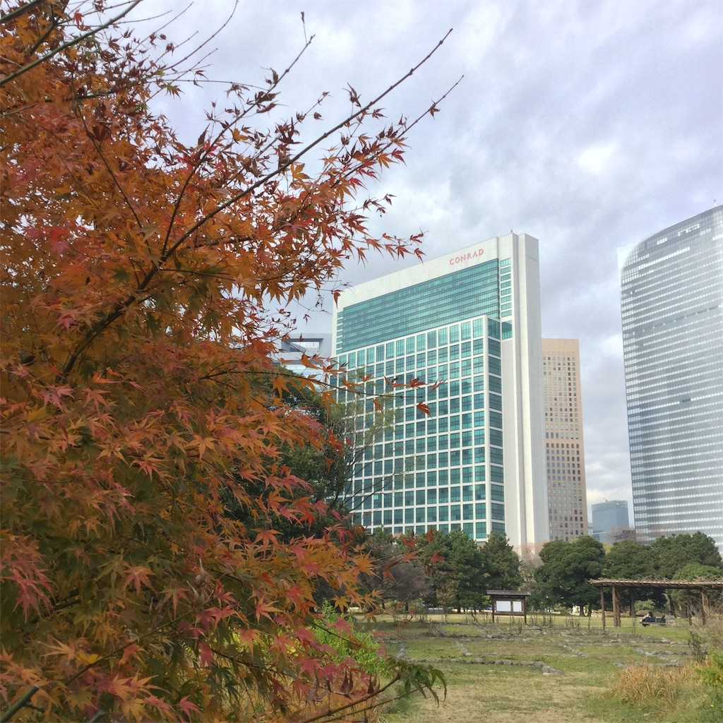 f:id:showtaro-aoki:20200115180717j:plain