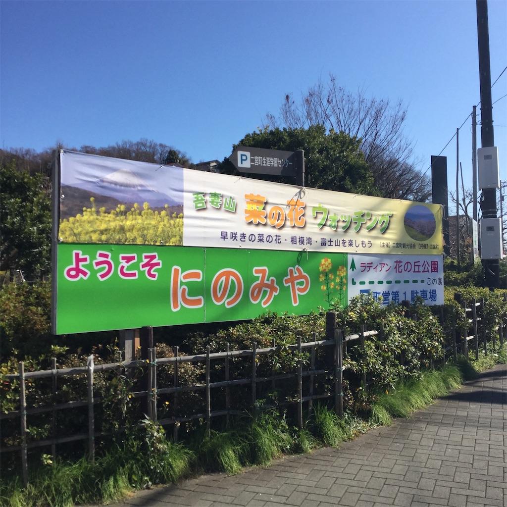 f:id:showtaro-aoki:20200202154504j:plain