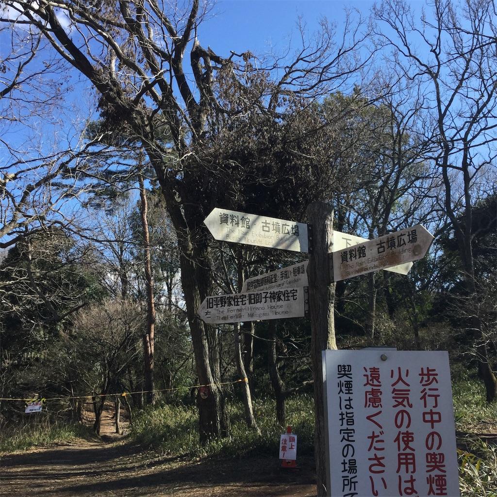 f:id:showtaro-aoki:20200317224144j:plain