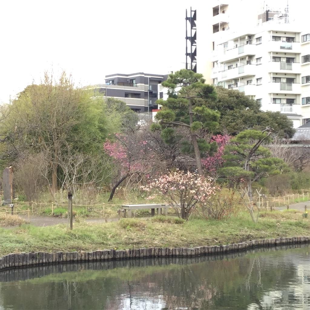f:id:showtaro-aoki:20200402113353j:plain