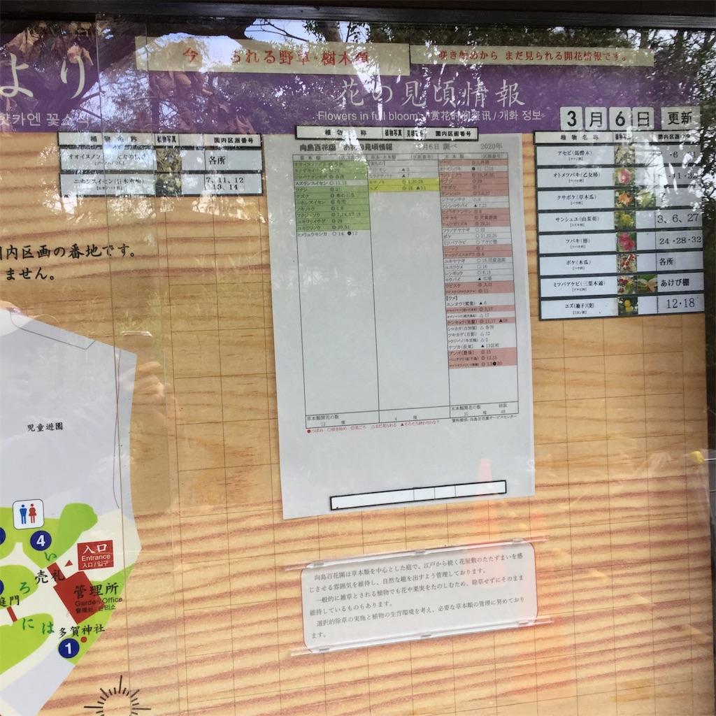 f:id:showtaro-aoki:20200402113426j:plain
