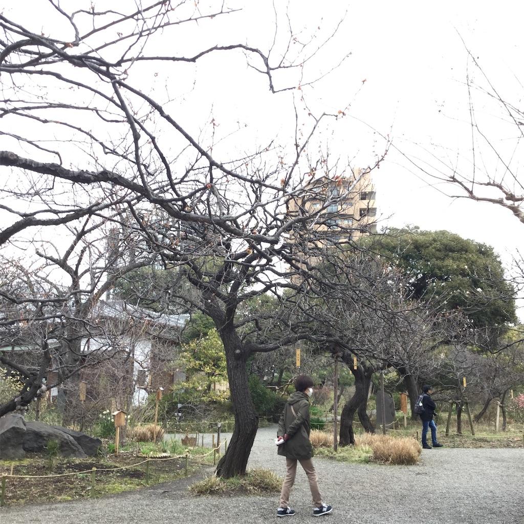 f:id:showtaro-aoki:20200402113503j:plain