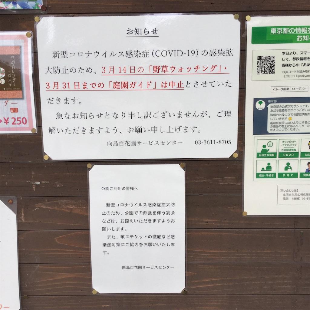 f:id:showtaro-aoki:20200402113514j:plain