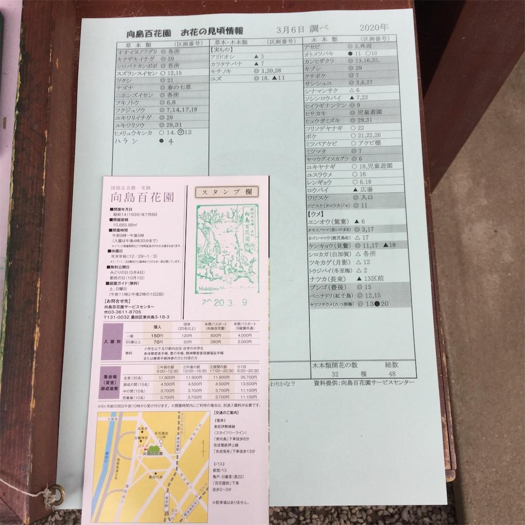 f:id:showtaro-aoki:20200402113526j:plain