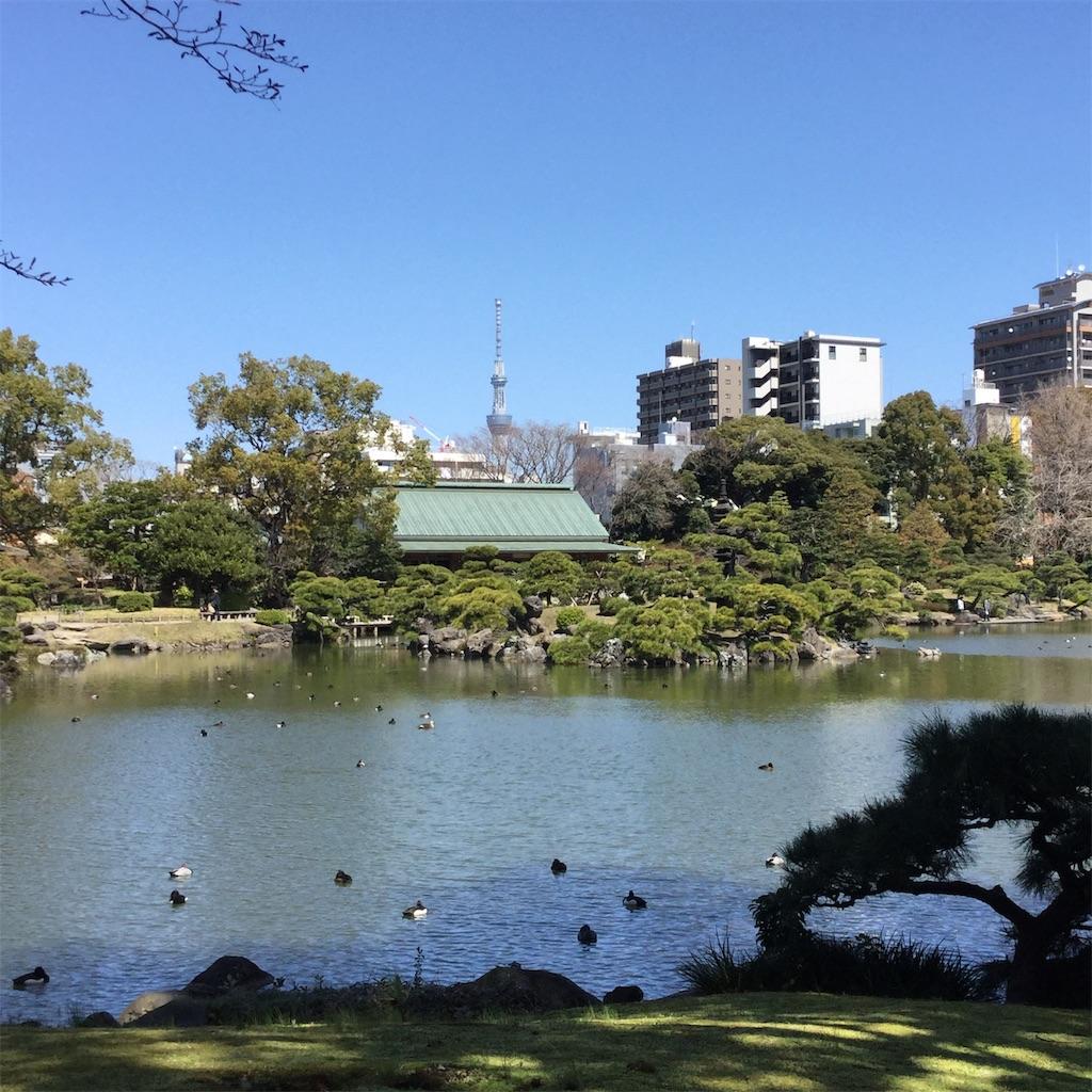 f:id:showtaro-aoki:20200619115347j:plain