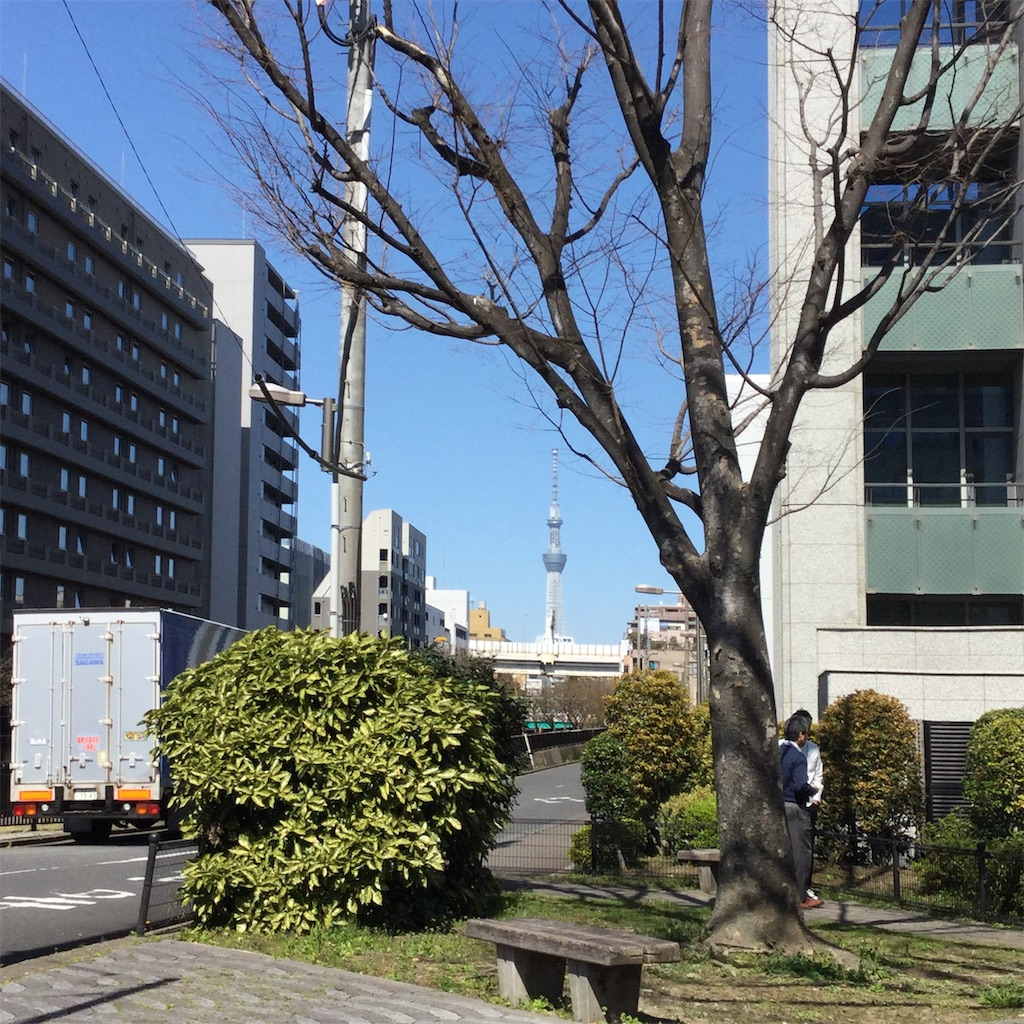 f:id:showtaro-aoki:20200619115624j:plain