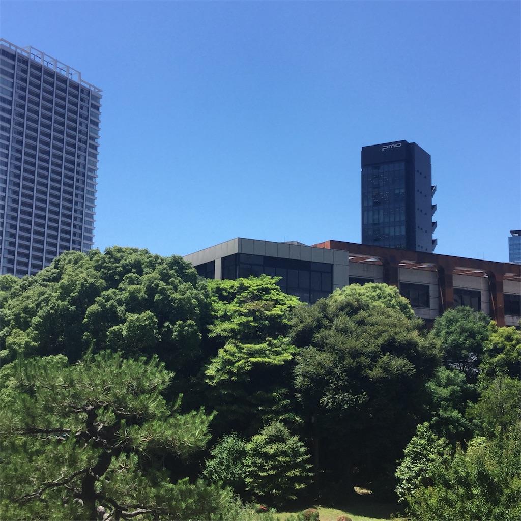 f:id:showtaro-aoki:20200622233531j:plain